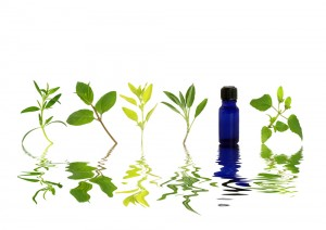shutterstock_watery herbs & blue bottle